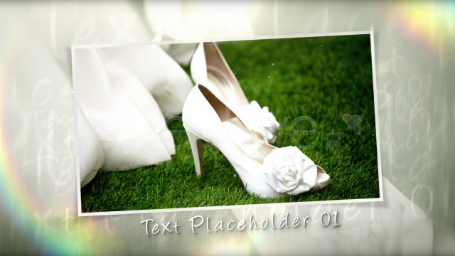 Wedding Moment 3dfootage.ru
