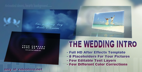 The Wedding Intro preview