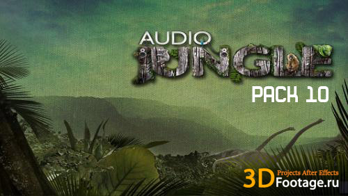 Audio Jungle pack 10