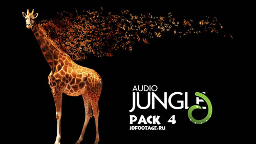 Audio Jungle pack 4