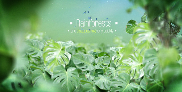 The Rainforests Titles